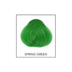 Directions 16 Spring Green 89 ml