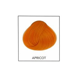 Directions 36 Apricot 89 ml